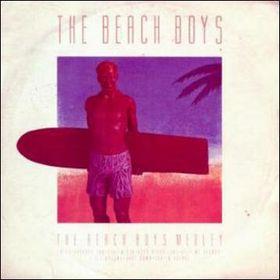 the_beach_boys_medley_cover