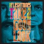 fleshtones-takeagood